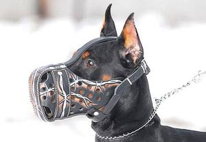 image from www.dog-muzzle.com