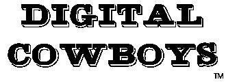 Digital Cowboys
