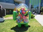 Android_jellybean-591x443