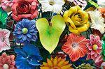 Flower-tree-kewl-flickr