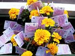 Money-flowers-epsosde-flickr