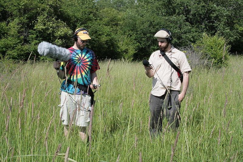Field-recording-wikipedia